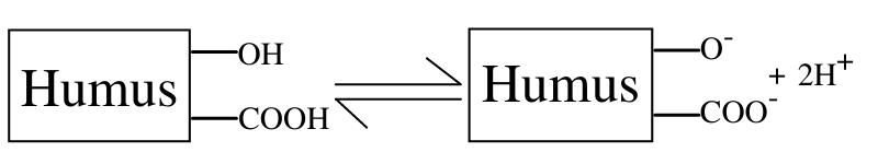 Production of carboxylic and phenolic acid groups