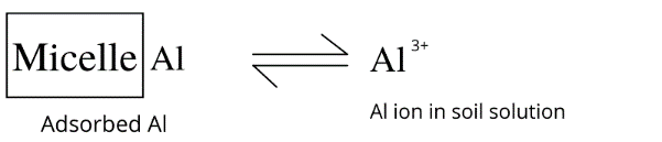 Al3+ ions contribute to soil acidity