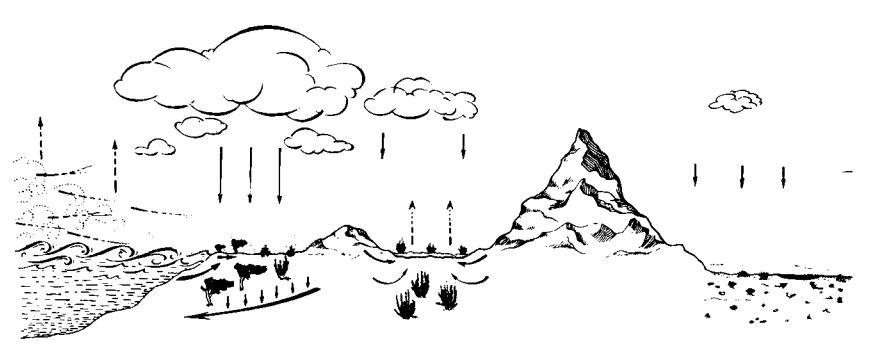 Marine salt cycle
