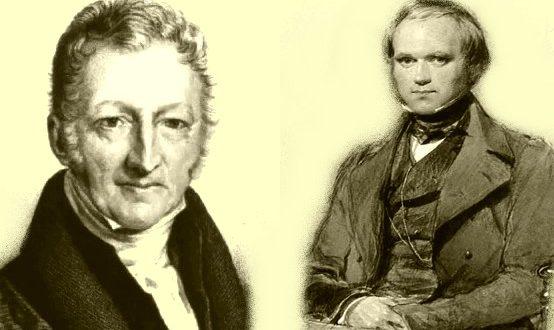 Malthus & Darwin
